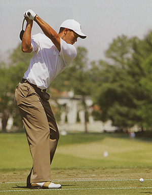 the perfect golf swing essay Critical review: david leadbetter's a swing   golf swing as a prototype  for their full golf swing action, and perfect golfer-exemplars from the 2015 pga/lpga.