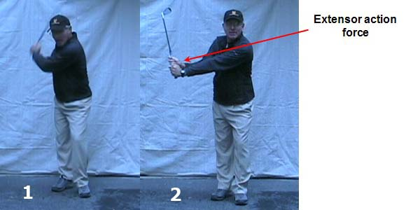 ExtensorActionForce - Model Golf Swing Video