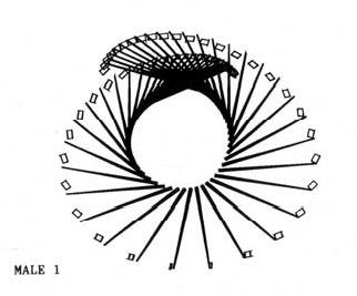 how to maximize wrist lag and av : golf swing diagram - findchart.co
