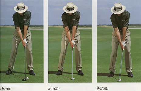 David Leadbetter address position - from reference number [3]